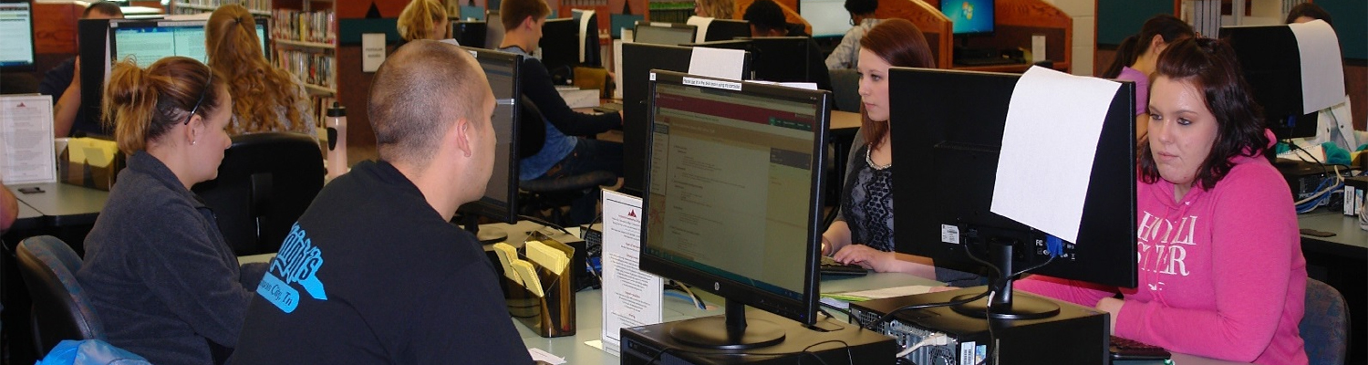 Students using computers in the library