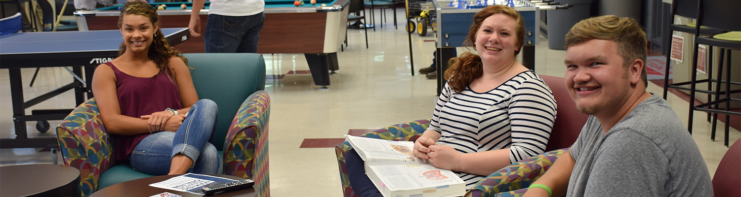 Students studying in the student lounge